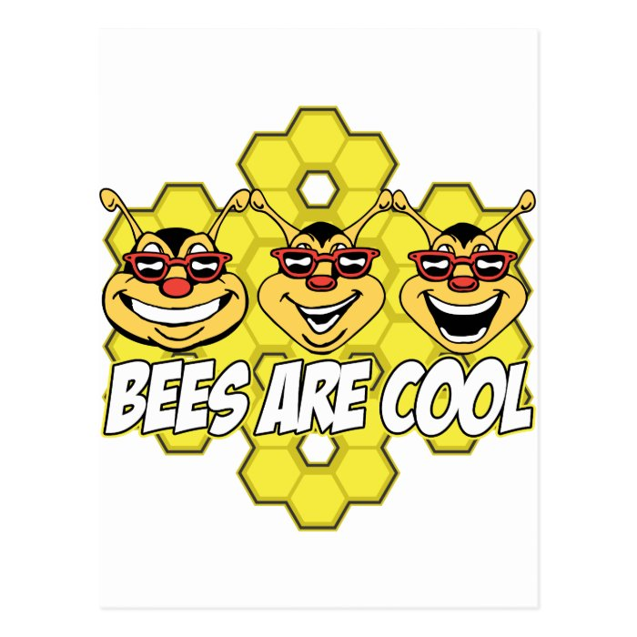 Cool Bees Postcard