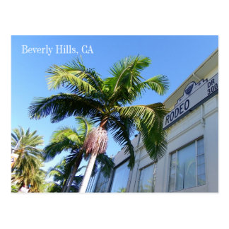 Cool Beverly Hills Postcard! Postcard