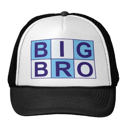 Cool Big Bro Shirt + More! Mesh Hat