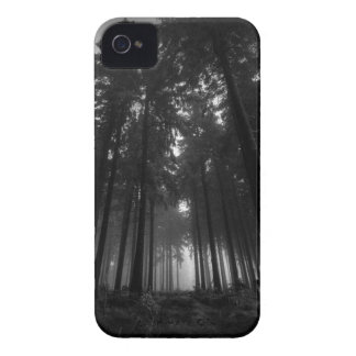 Cool Black and White Forest Fog Silence Gifts Case-Mate iPhone 4 Cases