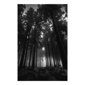 """Cool Black and White Forest Fog Silence Gifts 5.5"""" X 8.5"""" Flyer"""