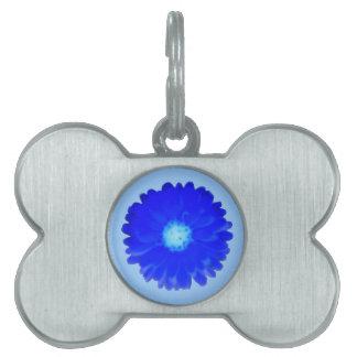 Cool Blue Marigold Pet Tag