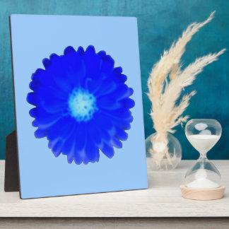 Cool Blue Marigold Plaque