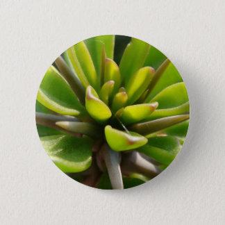 Cool Cactus 6 Cm Round Badge
