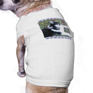 Cool Cat (Boy) Sleeveless Dog Shirt