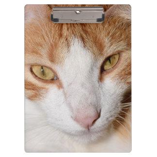 Cool Cat Clip Board - Orange Is The New Cat