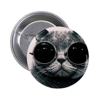 cool cat kool kat with shades 6 cm round badge