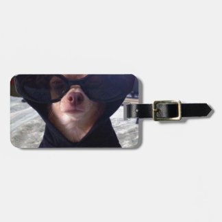 Cool Chihuahua Luggage Tag