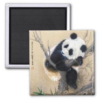 Cool chinese cute sweet fluffy panda bear tree art square magnet
