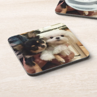 Cool coasters with dogs on them