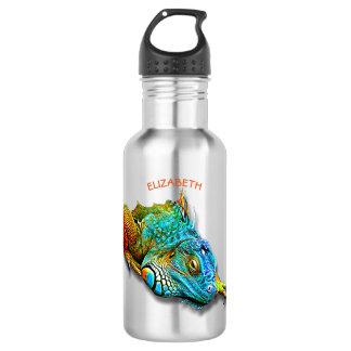 Cool Colorful Cute Rainbow Lizard Reptile 532 Ml Water Bottle