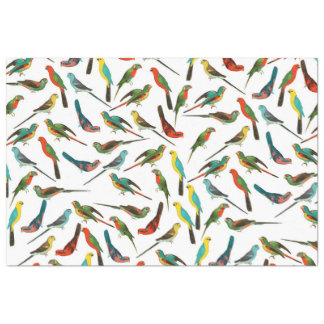 Cool colorful tropical watercolor birds pattern tissue paper