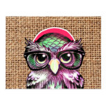 Cool  Colourful Tattoo Wise Owl With Funny Glasses Postcard