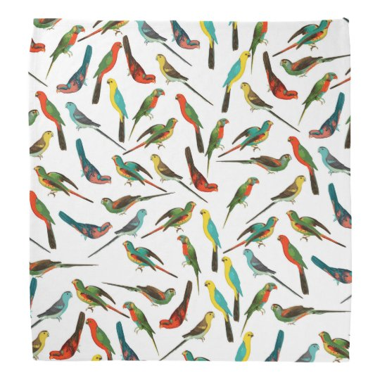Cool colourful tropical watercolor birds pattern bandana