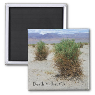 Cool Death Valley Magnet! Square Magnet