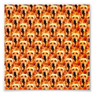Cool Dog Art Doggie Golden Retriever Abstract Art Photo