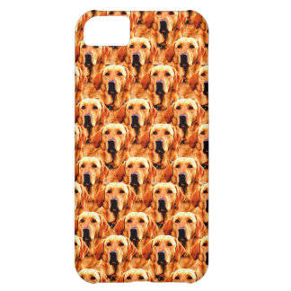 Cool Dog Art Doggie Golden  Retriever Abstract iPhone 5C Case