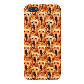 Cool Dog Art Doggie Golden  Retriever Abstract iPhone 5/5S Cases
