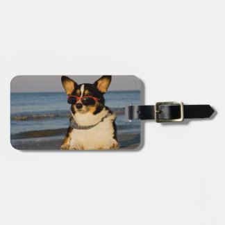 Cool Dog at the Beach Luggage Tag
