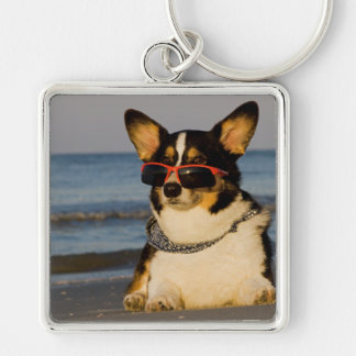 Cool Dog at the Beach Silver-Colored Square Key Ring