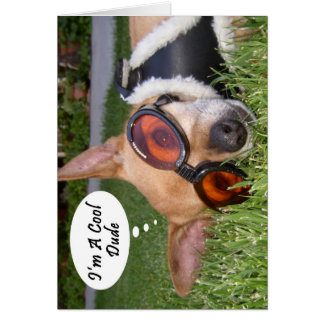 "Cool Dude Chihuahua Dog, ""I'm a Cool Dude"" Card"