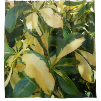 Cool Green and Yellow Leaves Bush Up Close Picture Shower Curtain