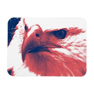 Cool Grunge Bald Eagle Rectangular Photo Magnet