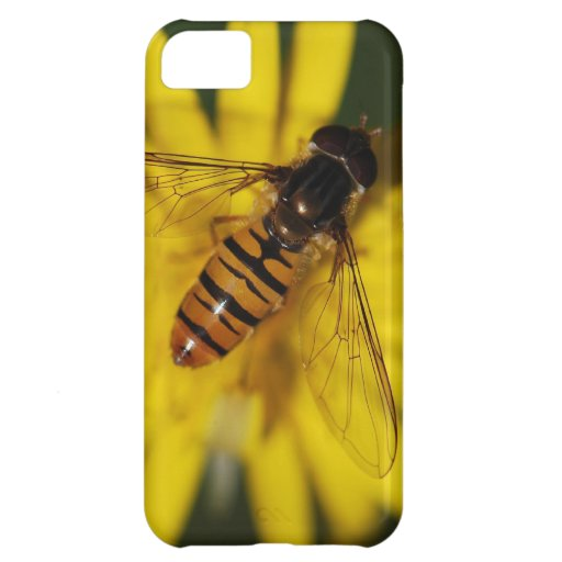 Cool Honey Bee on Flower in Nature Photography iPhone 5C Cover