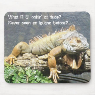 Cool Iguana Mouse Mat