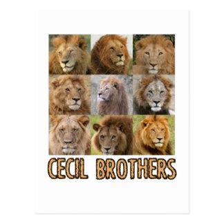 cool Lion designs Postcard