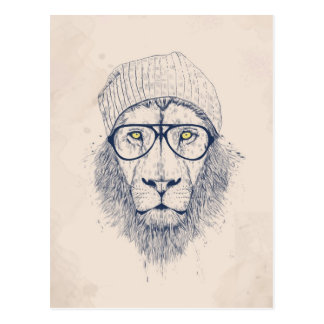 Cool lion post card