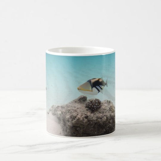 Cool Maldives White Sand Lagoon Fish Souvenir Coffee