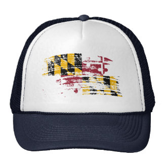 Cool Marylander flag design Hat