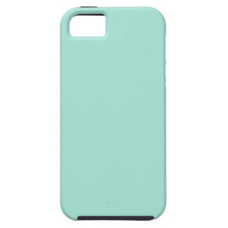 Cool Mint Green iPhone 5/5S Case