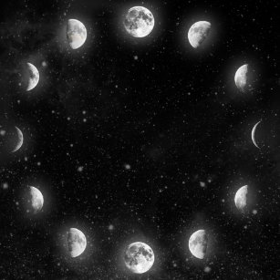 Cool Moon Phases Poster