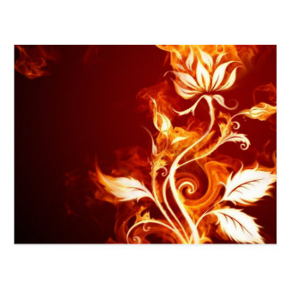 Cool Orange and Yellow Fire Flower Fire Rose Postcard