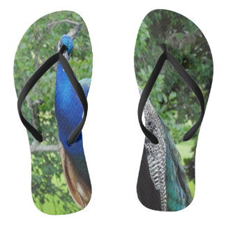 cool peafowl flip flops