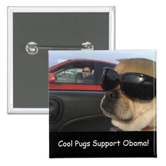 Cool Pugs Support Obama Buttons
