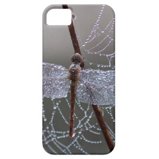 Cool Realistic Raindrops Spiderweb & Dragonfly iPhone 5 Covers