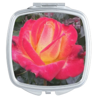 Cool Red rose compact square mirror