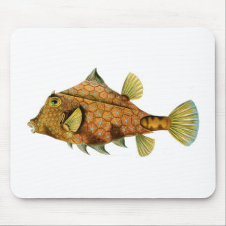 Cool retro colourful fish drawing mouse pad