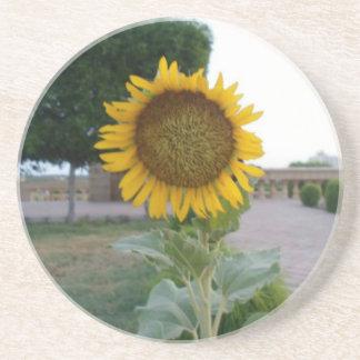 Cool Retro Trendy Hakuna Matata Gifts Sunflower de Coaster