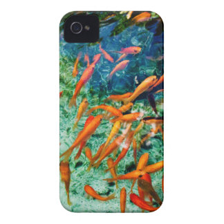 Cool School iPhone 4 Case-Mate Cases