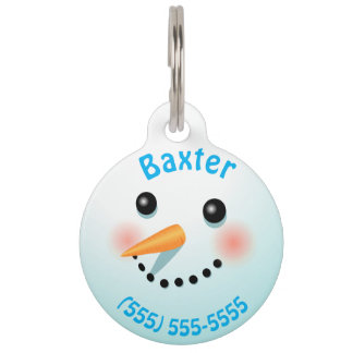 Cool Smiling Snowman With Carrot Nose Pet Nametags