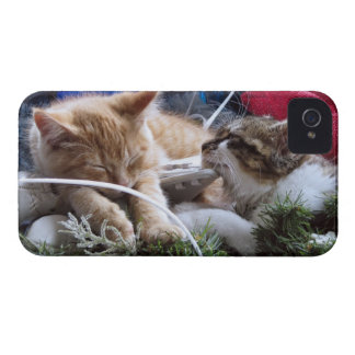 Cool Snow Cats, Two Kittens in Love, Winter Skates iPhone 4 Case-Mate Case
