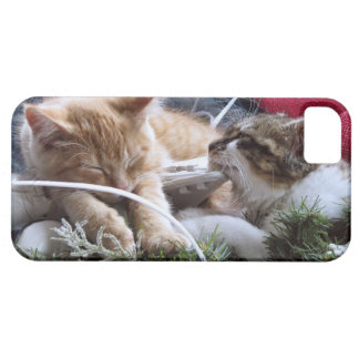 Cool Snow Cats, Two Kittens in Love, Winter Skates iPhone 5 Covers