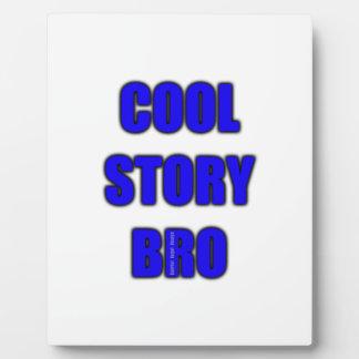 Cool Story Bro Display Plaque
