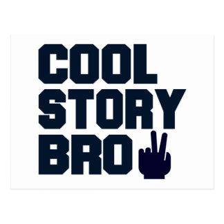 Cool Story Bro Postcard