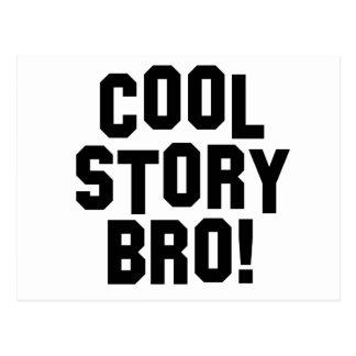 Cool Story Bro! Postcard