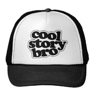 Cool story bro trucker hat